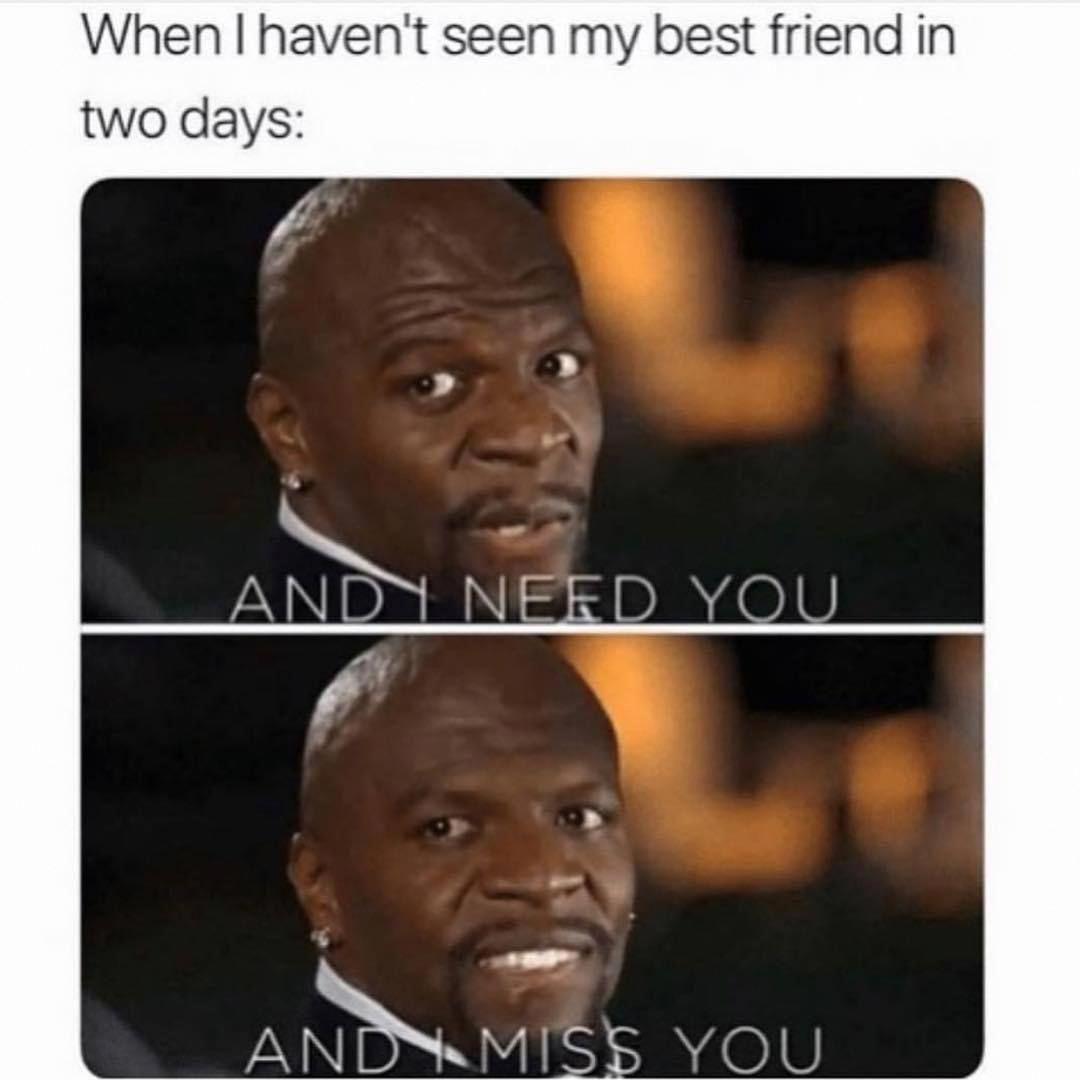 Teenagerpostscomebacks Very Funny Memes Best Friend Meme Hilarious