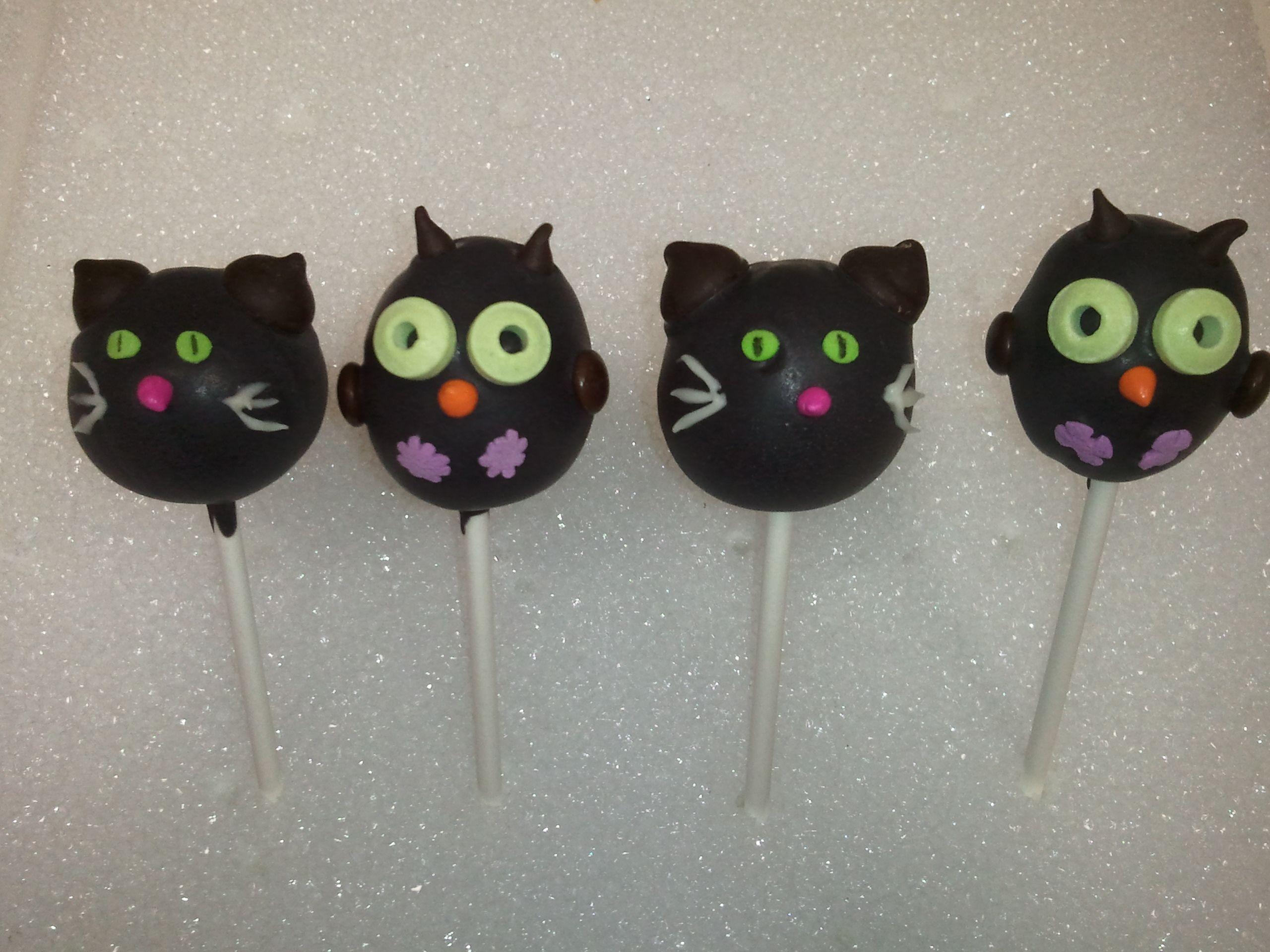 black cats & owls