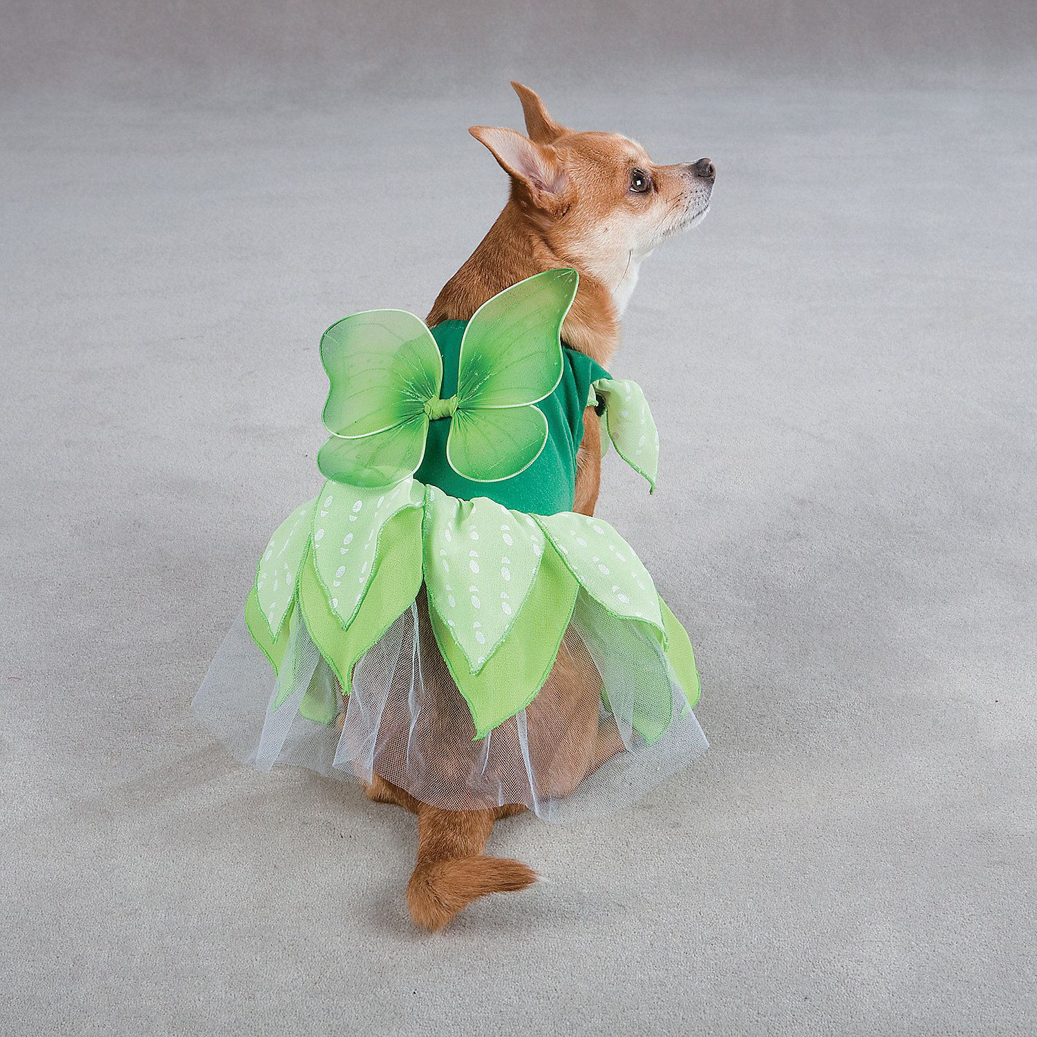 Chic Fairy Dog Costume for Halloween & Green Fairy Tails Dog Costume - OrientalTrading.com #OrientalTrading ...