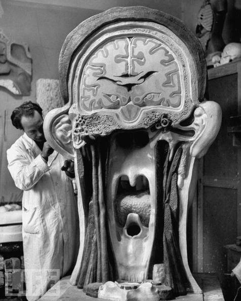 Giant anatomical model of the head