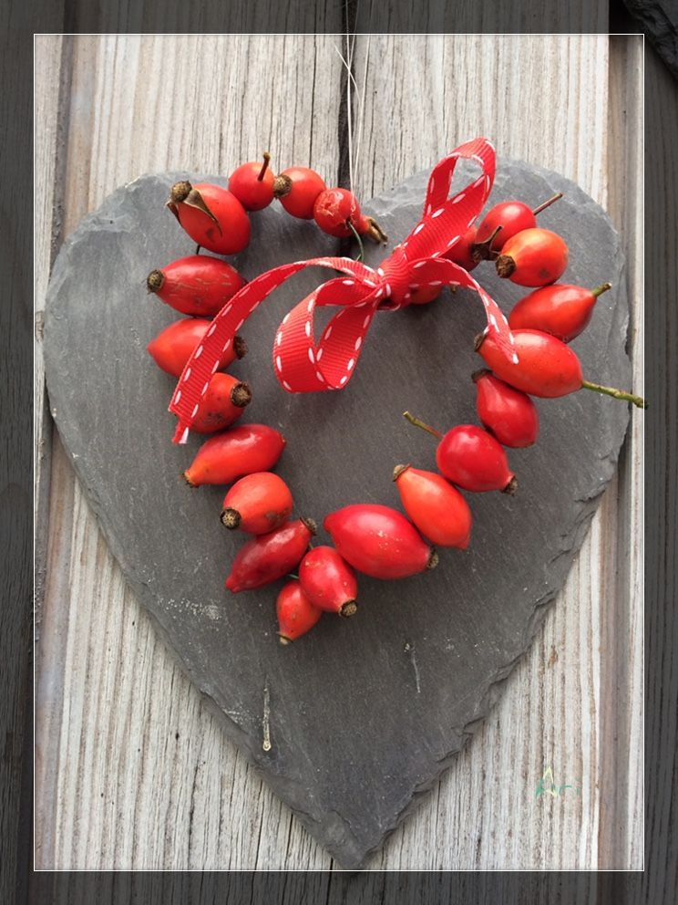 Hagebutten-Herz, Herbstdeko basteln, Hagebutten auf einen dünnen ...