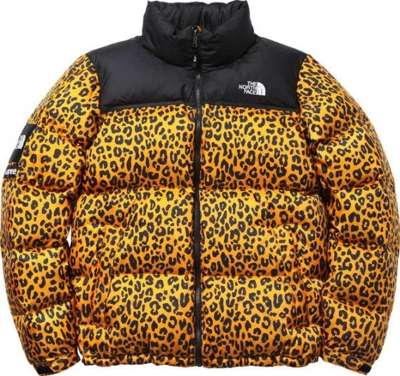 Supreme X The North Face North Face Nuptse The North Face Down Jacket