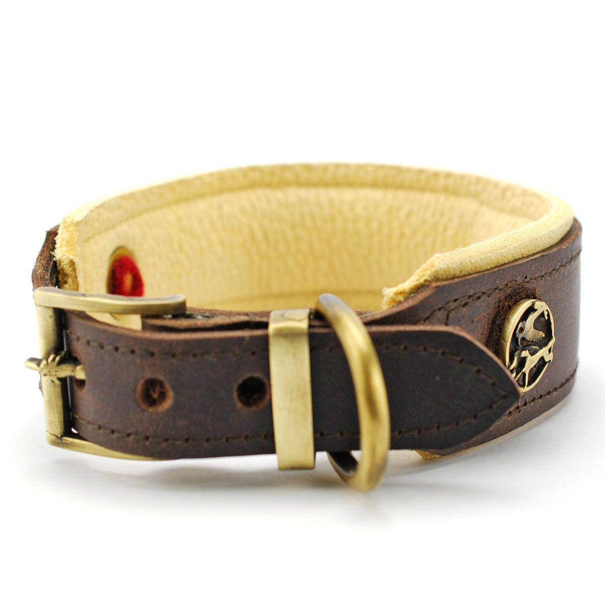 Hundehalsband Jagdgluck Hundehalsband Hundehalsband Leder Halsband