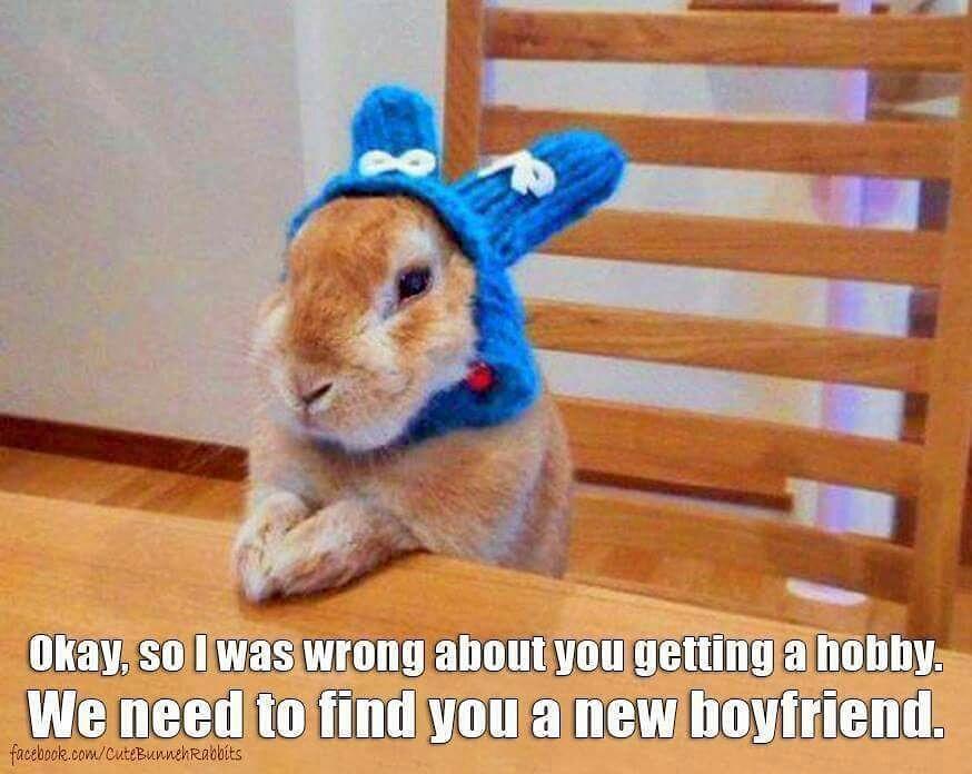 ᖴᘢᘗᘗᖻ ᗗᘙᓿᙢᗋᒸ ᙜᕦᙏᕩᔙ ʕ•ᴥ•ʔ ~ Crazy bunny lady ... 0ff3924ac959