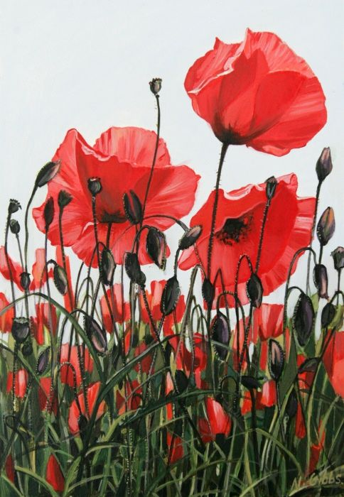 poppy paintings - Google Search