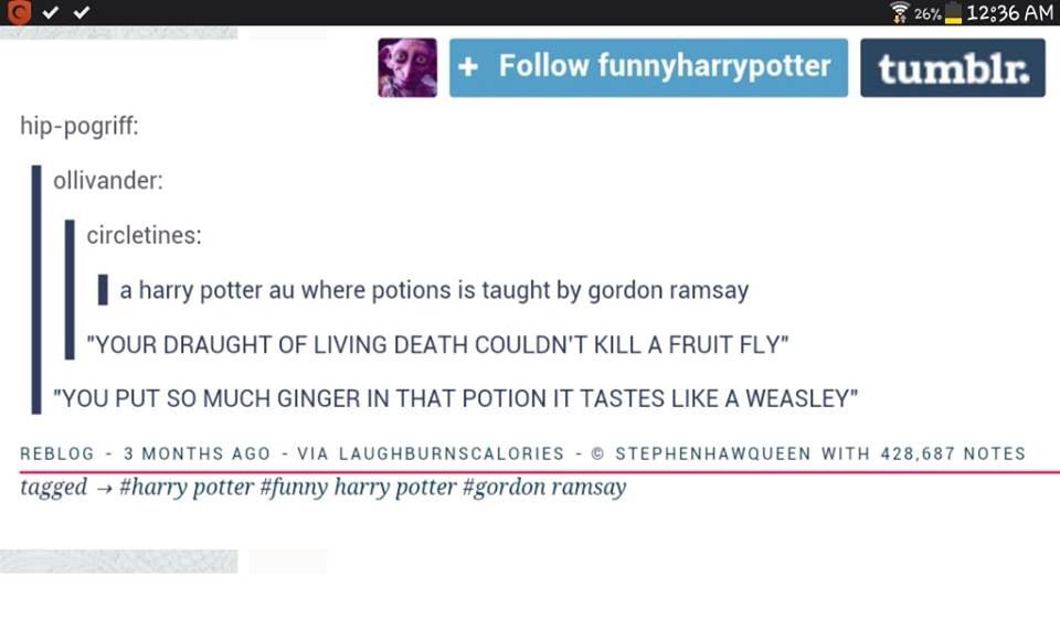 Gordon Ramsay teaching potions what a treat Harry Potter - harry potter resume