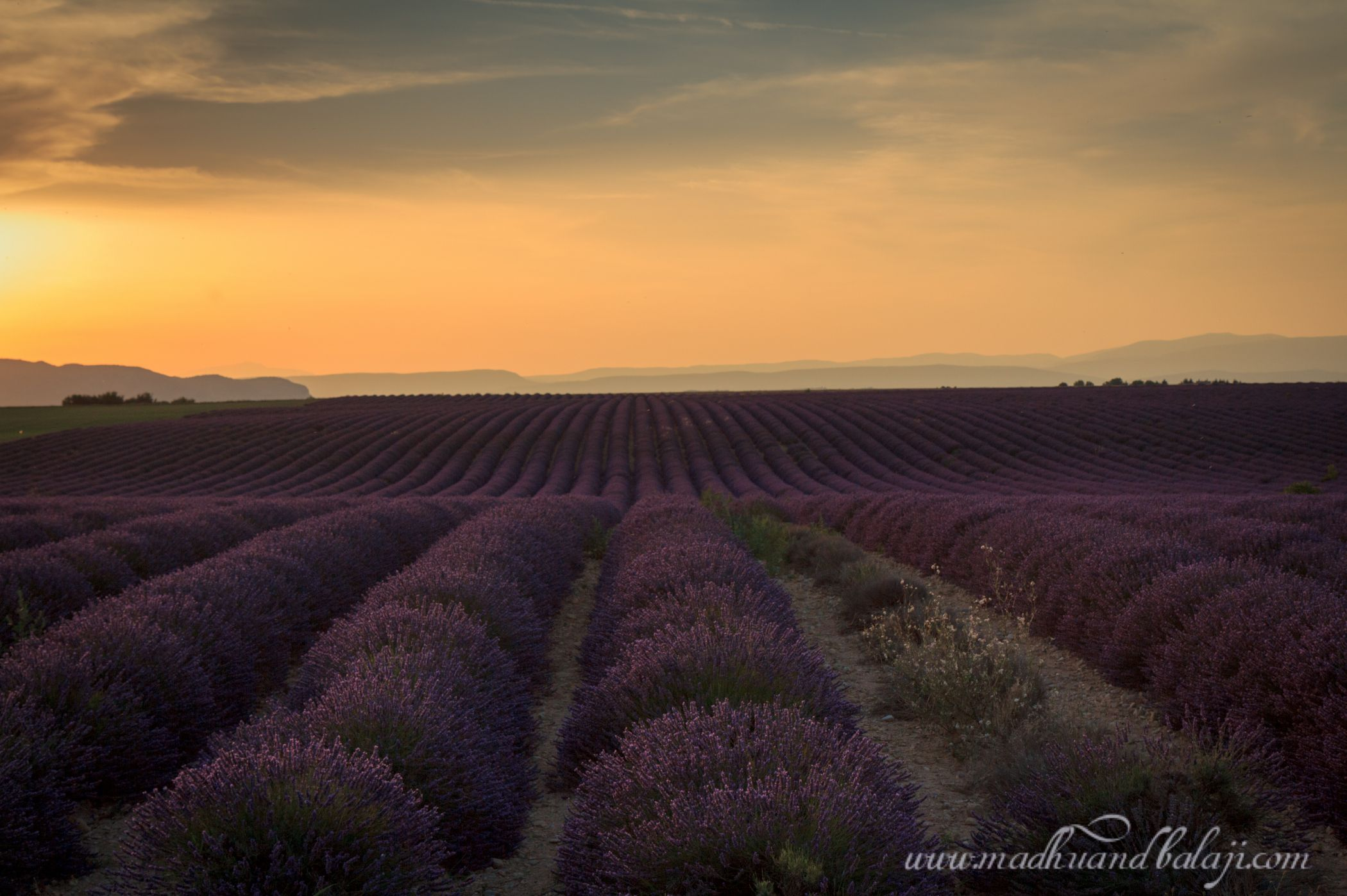 Postcards from Provence, France - Affair with the World