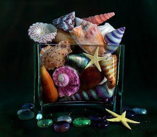 Decoraci�n con conchas de mar