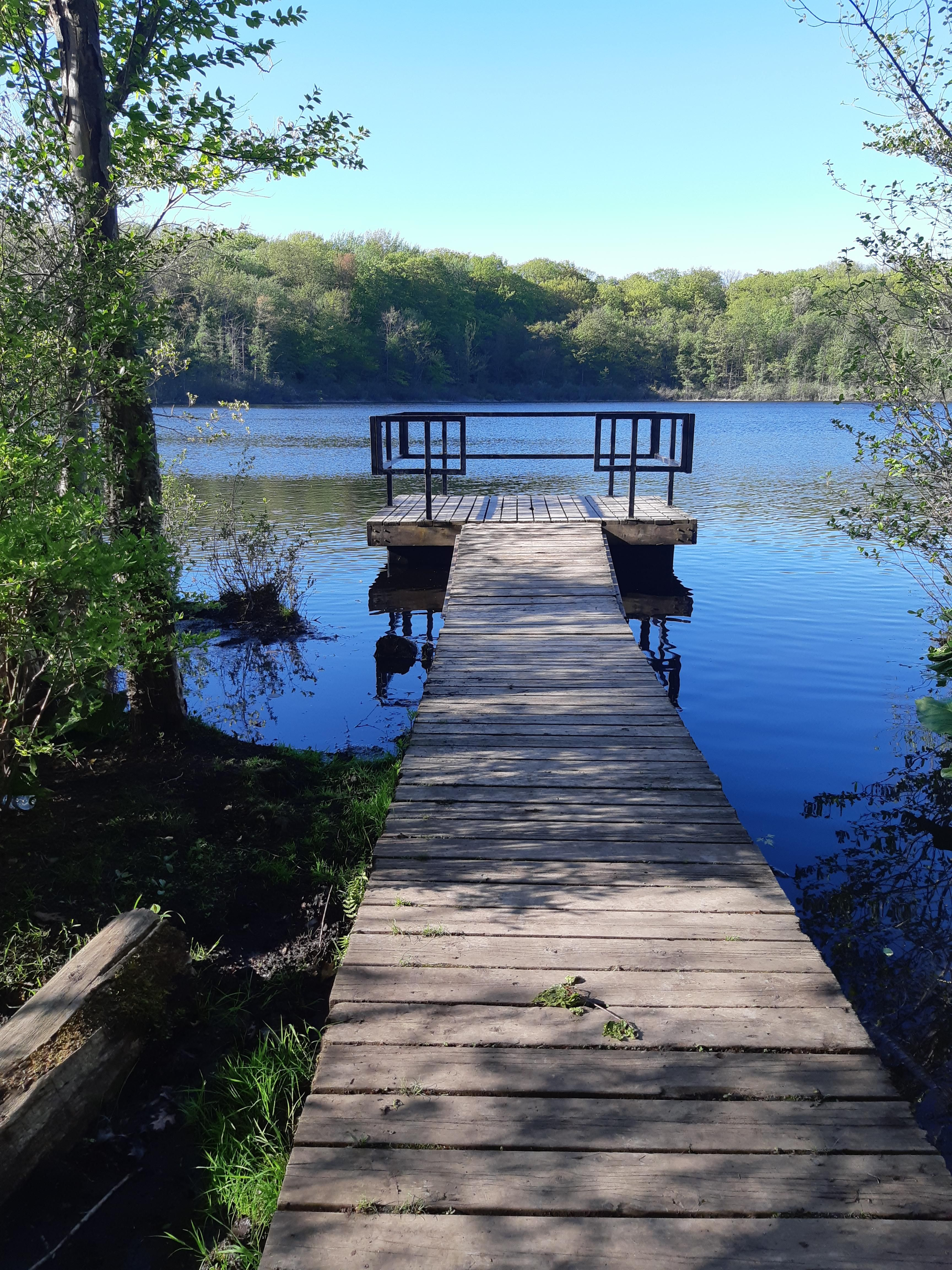 Camping London Ontario >> The Prize At The End Of My Forest Trail Westminister Ponds London