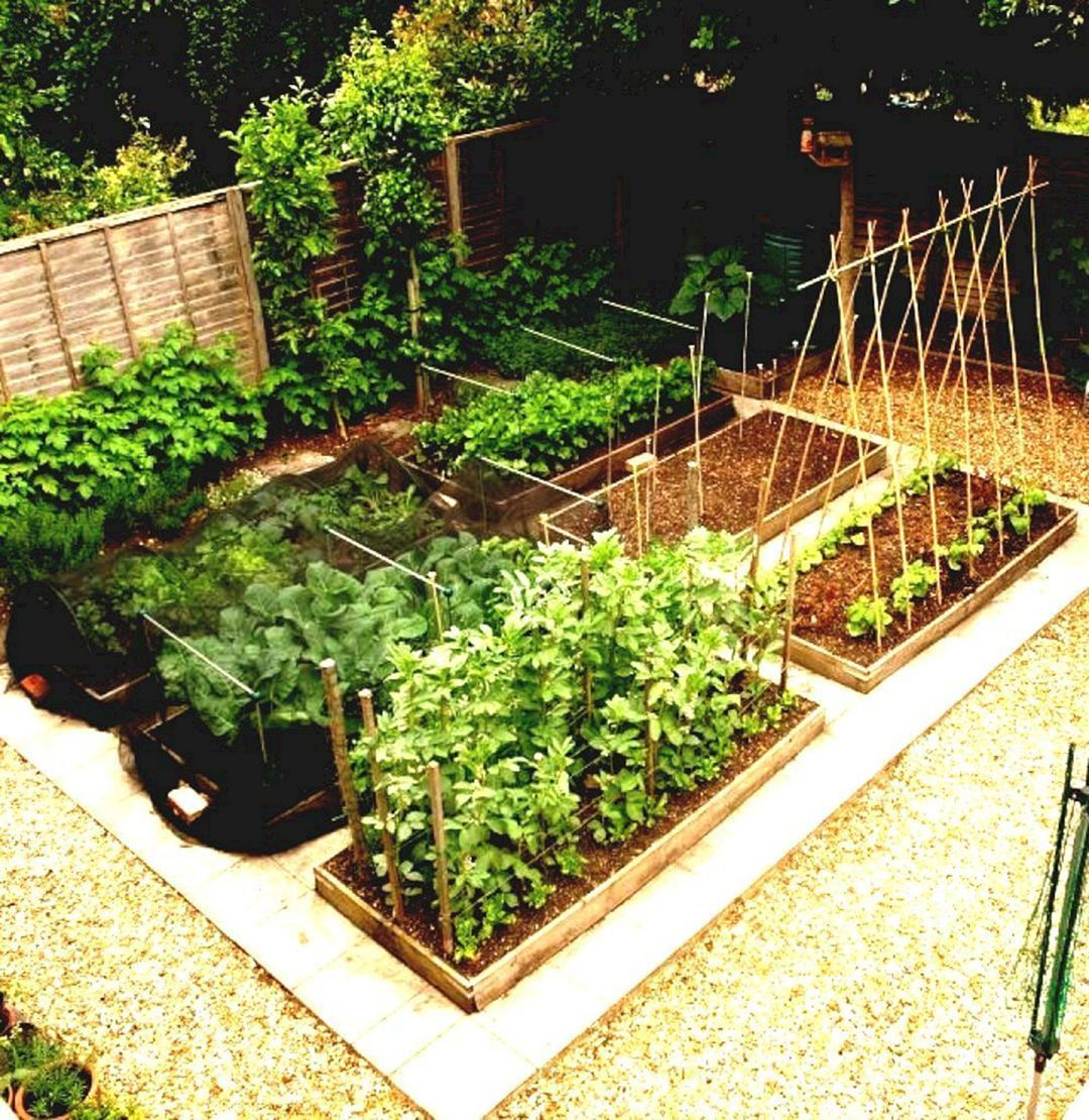 45 Small Vegetable Garden For Attractive Backyard Design Ideas 24 Small Vegetable Gardens Vegetable Garden Design Backyard Design