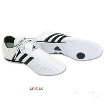Top 10 Best Adidas Martial Arts Shoes
