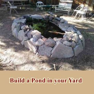 Build a Pond in your Yard DIY Project - frugal ...
