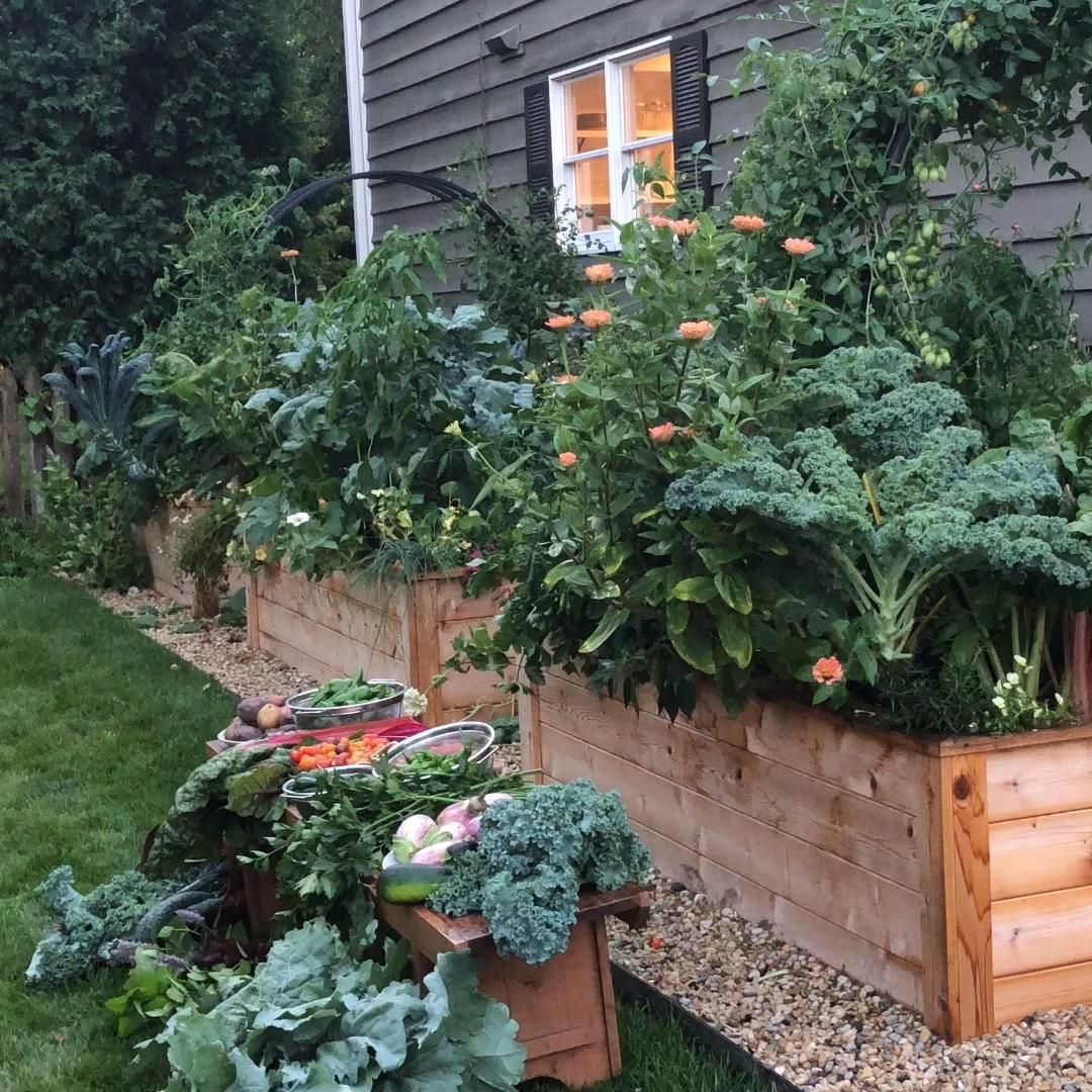 Photo of Machen Sie Ihre Angehobene Garten-Bett-Ziele Geschehen – Blumenbeete Ideen 2020