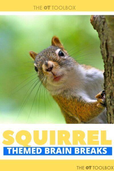 Squirrel Brain Breaks   Scaredy squirrel Brain breaks ...