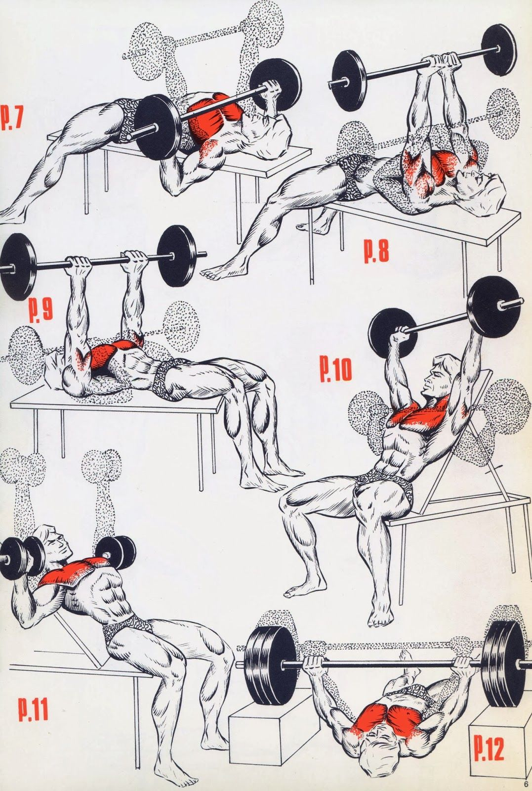 fitness & bodybuilding This a simple exercises for the