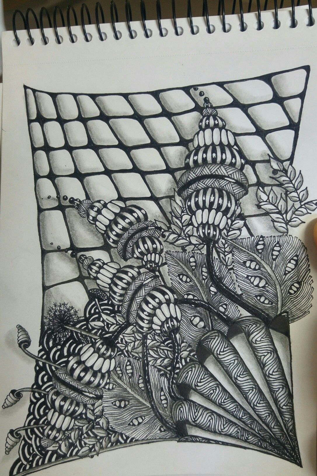 Pin by Kesem Zailer on wow | Pinterest | Zentangles, Tangled and Doodles