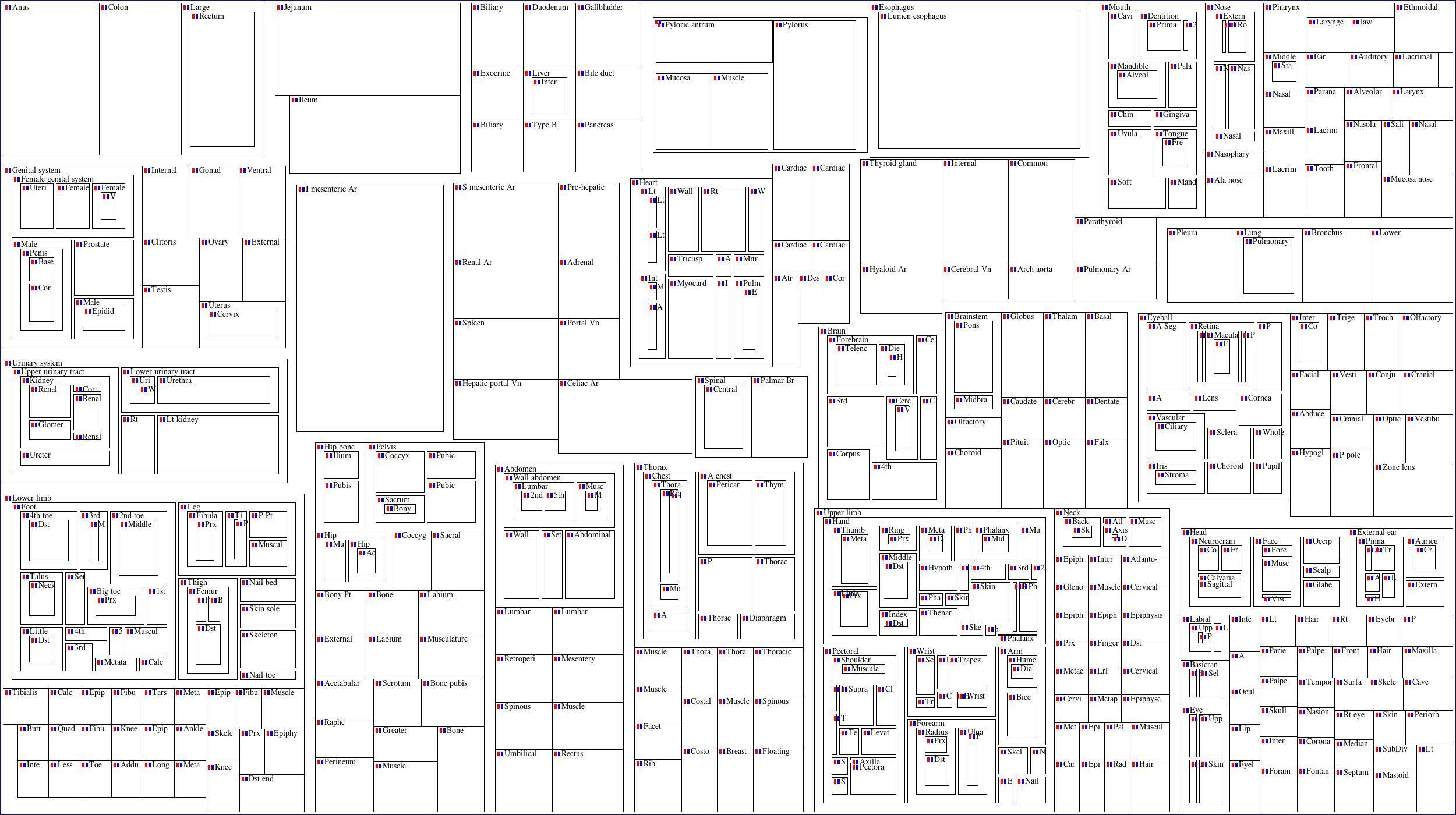 Crossword Puzzle Human Body Crossword Puzzle Gallery | Jymba organ ...