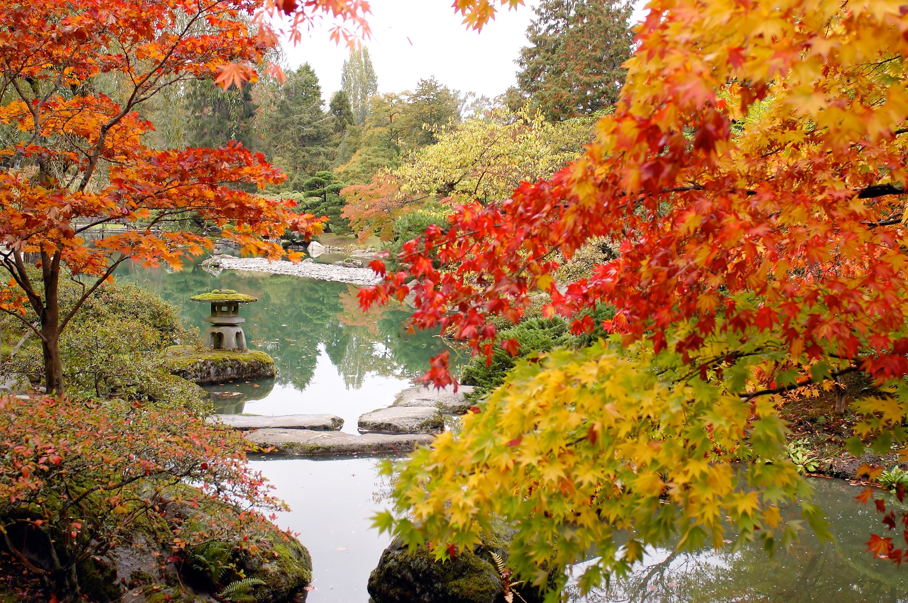 Japanese Gardens - Japanese Landscape