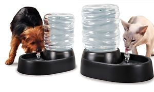 Groupon - Auto Flow Electric Pet Water Fountain in [missing {{location}} value]. Groupon deal price: $19.99