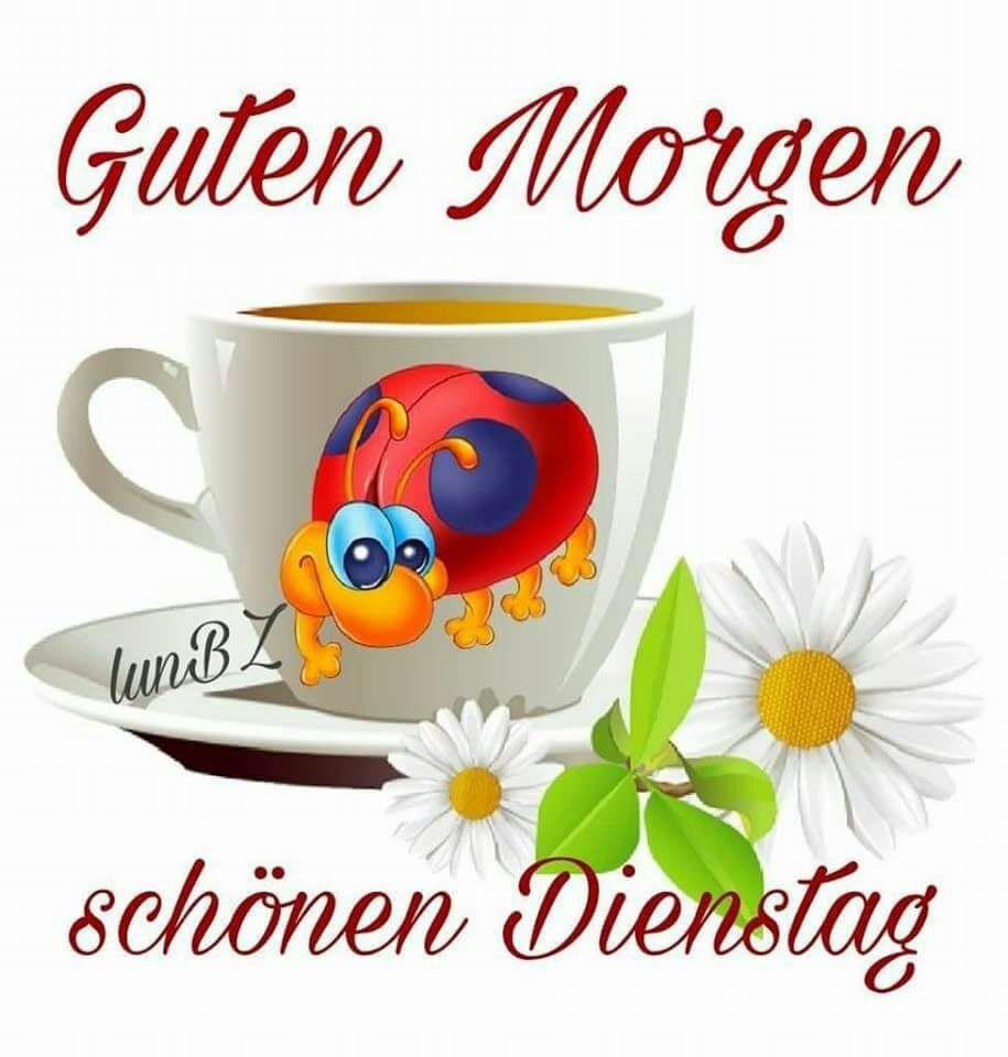 Dienstag Dienstag Morgen Guten Morgen Und Dienstag