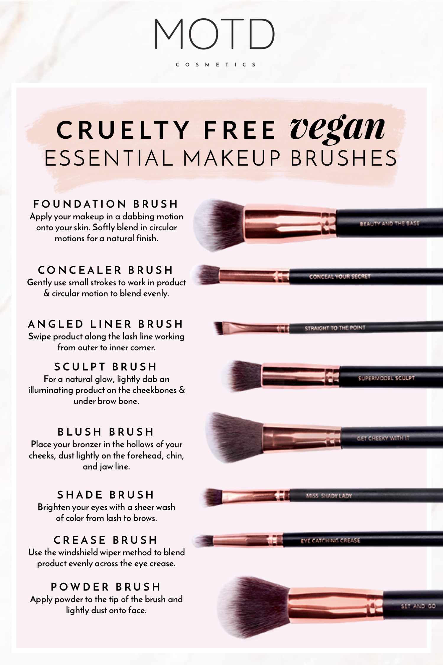 What Makeup Brushes Do Beginners Need