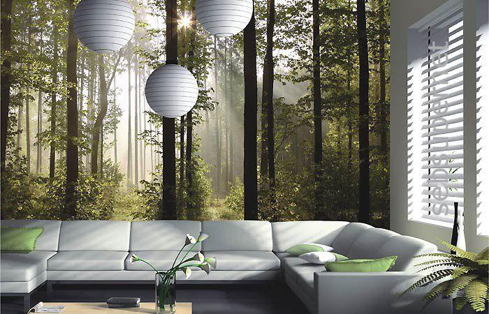 Wall Mural Wallpaper Nature Forest Tree Light Show Photo 360 Cm X 254 Yd Murals Sticker