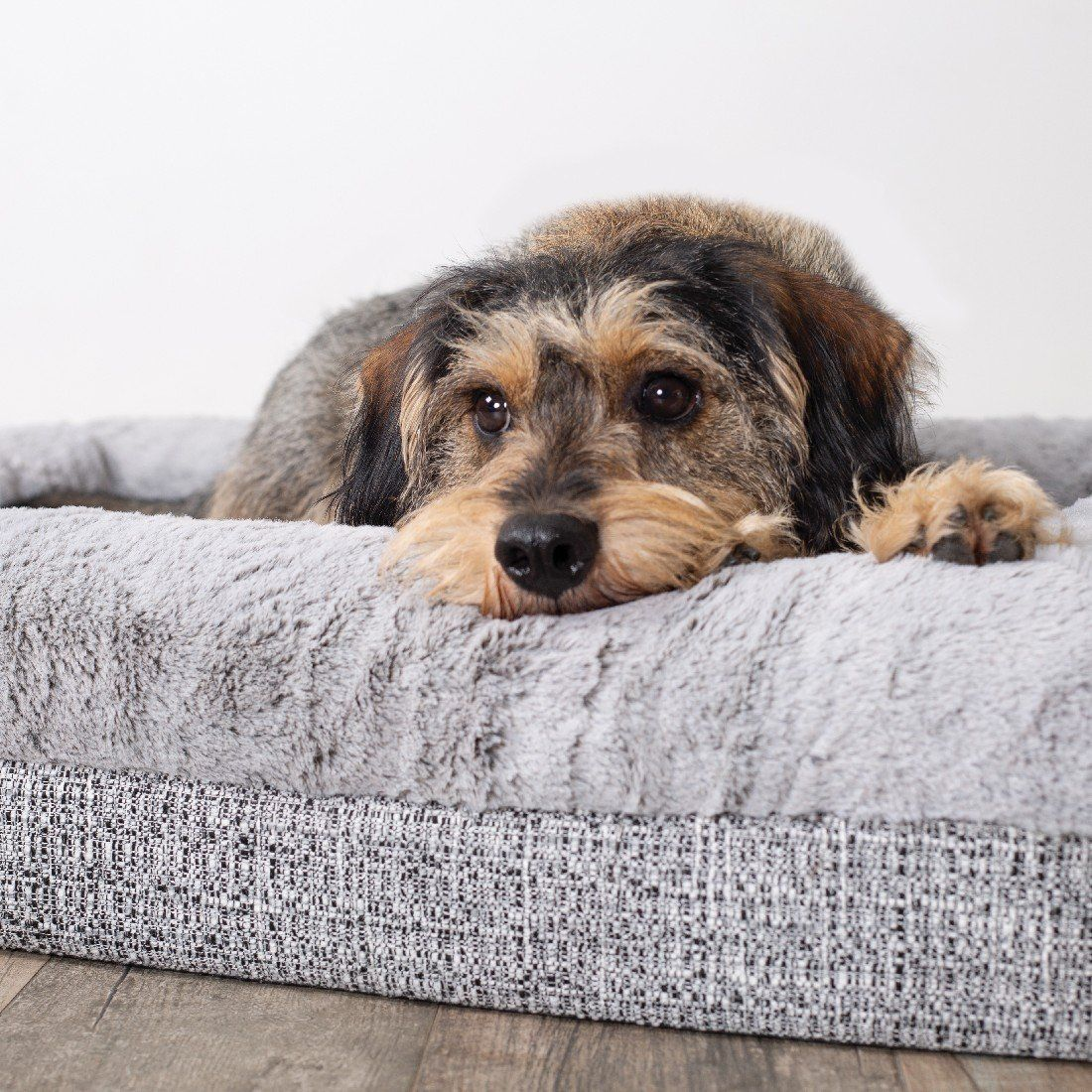 Pin On Cosy Pet Bedding