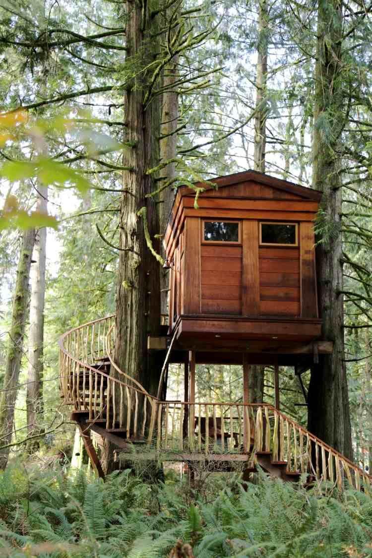 Kleines Baumhaus Aus Holz Unter Den Bäumen Mi Treppe