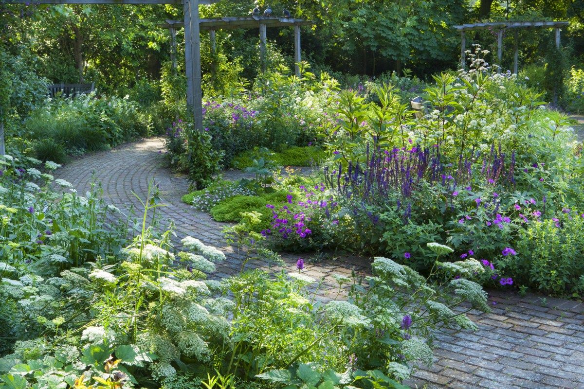 best images about jardins on pinterest gardens sun and wisteria