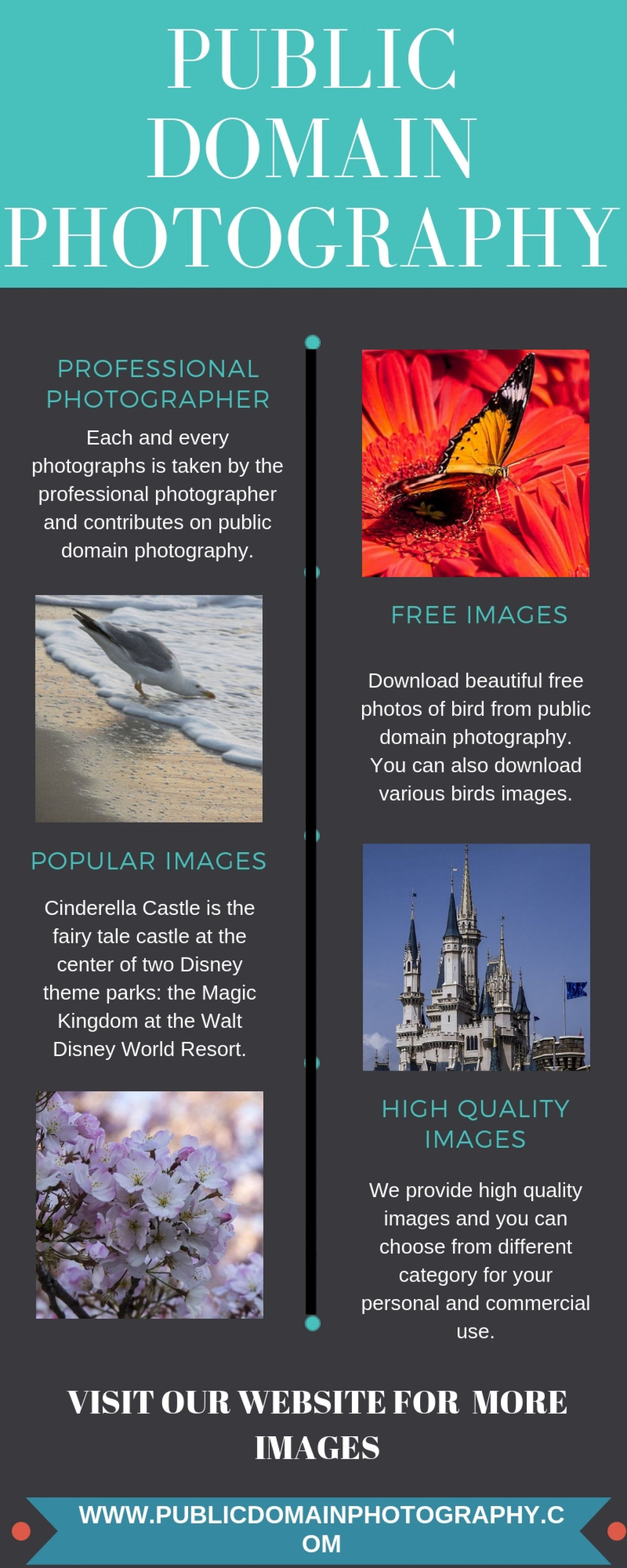 Free Images Infographic | Free Background Images Download