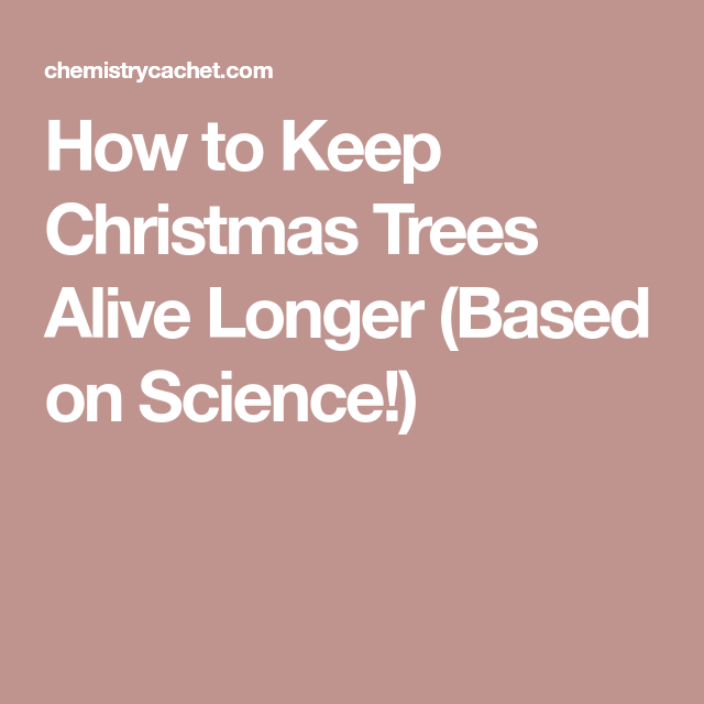 How to Keep Christmas Trees Alive Longer (Based on Science ...
