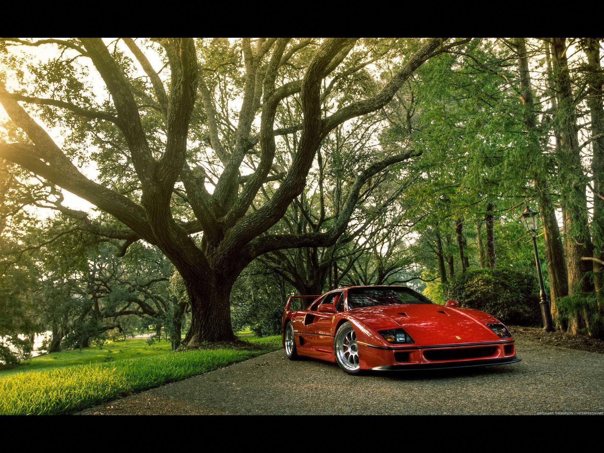 The Exciting Ferrari Enzo Ferrari F40 Ferrari Car Car Photos
