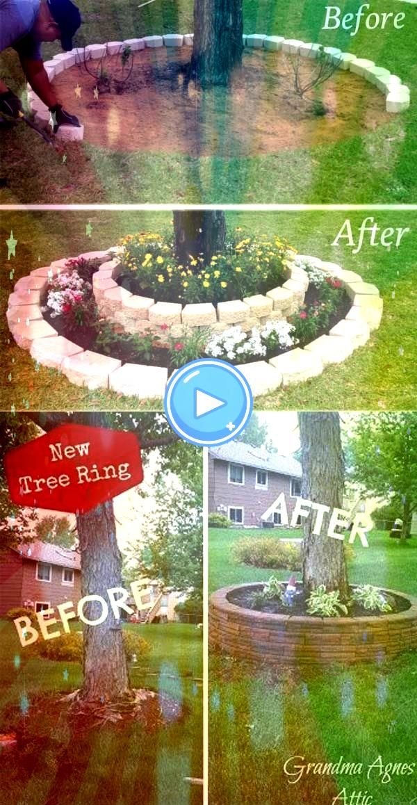 a landscape accent around your garden tree trunks with stacked stonesCreate a landscape accent around your garden tree trunks with stacked stones Lanscaping Around Trees...