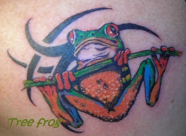 Crazy Chest Tattoo: Frog Tattoos On