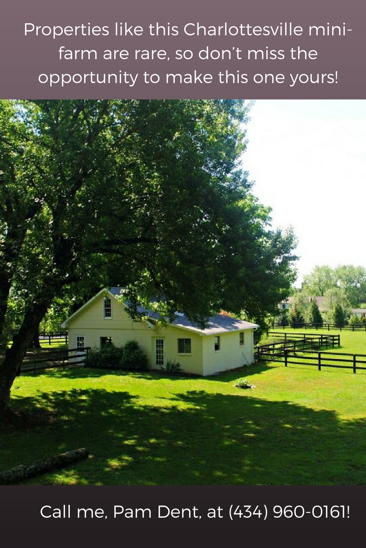 small farms for rent near me on a perfect property to create the farm of your dreams click here to learn more charlottesvillevahorsefarmforsale charl horse farms for sale farm horse farms pinterest