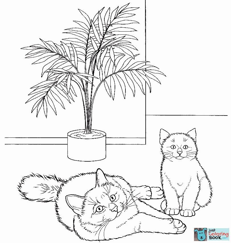 Birman Cat Coloring Page Free Printable Coloring Pages Inside