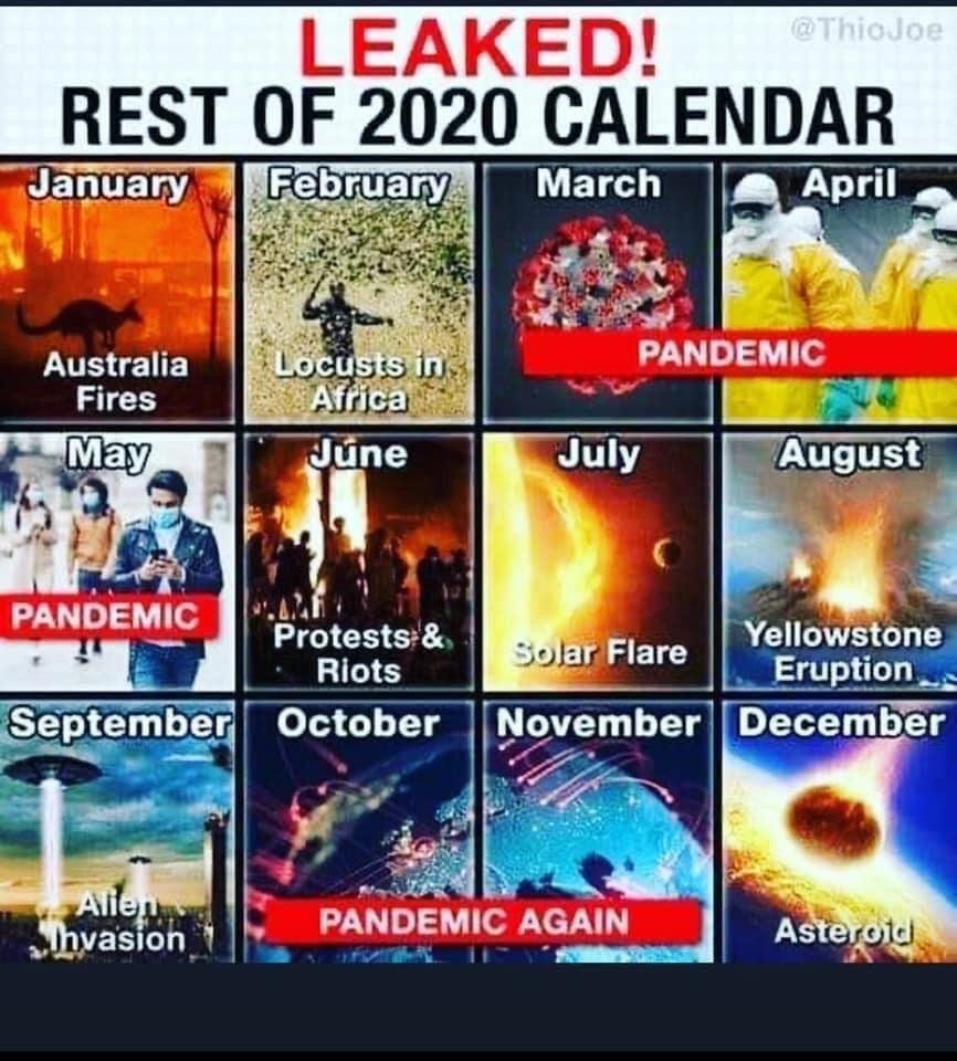 2020 Calendar January February March April Solar Flare Funny Memes