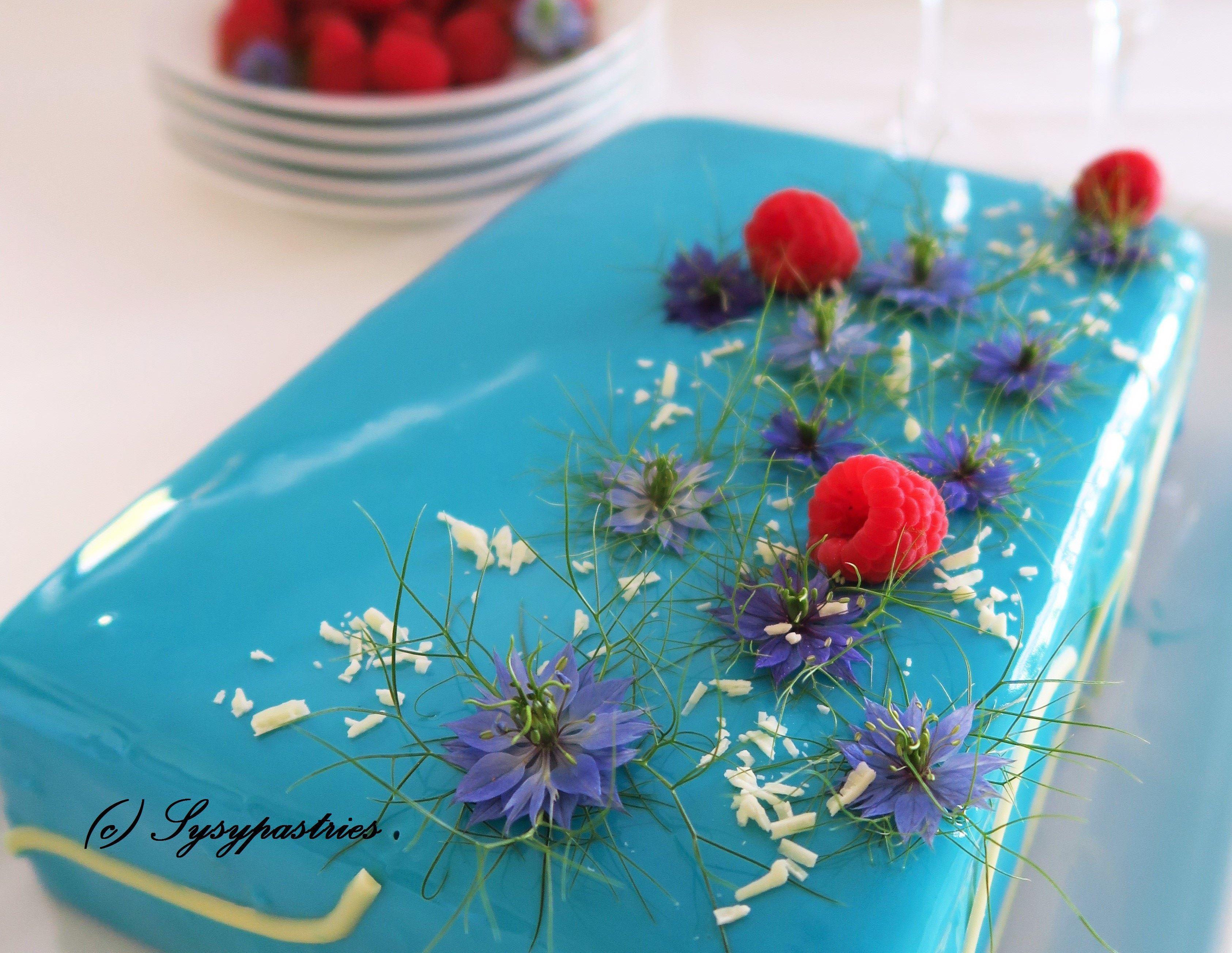 Citron-framboise .... Biscuit madeleine et framboises, crémeux framboise, gélifié framboise, mousse citron, glaçage miroir  bleu... #biscuitmadeleine Citron-framboise .... Biscuit madeleine et framboises, crémeux framboise, gélifié framboise, mousse citron, glaçage miroir  bleu... #biscuitmadeleine