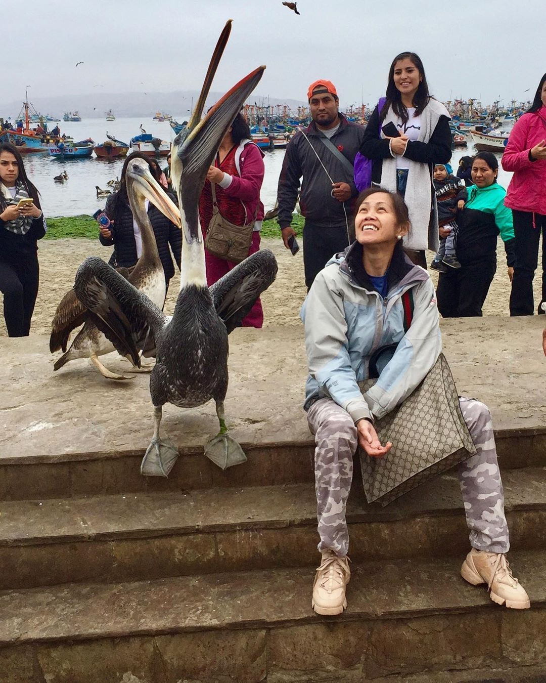 Grateful for the gift of travel.  Made some new friends including this Pelican!  This trip is not only an adventure but mostly a journey!  Made me see the so many faces of life! â â â â â #travel #adventure #journey #life #friends #animals #pelicans #journeyofalifetime #giftoftravel #neverstopexploring #northface #facesoflife #people #places #faces #travelperu #ica #peru #mytravel #myjourney #travellife