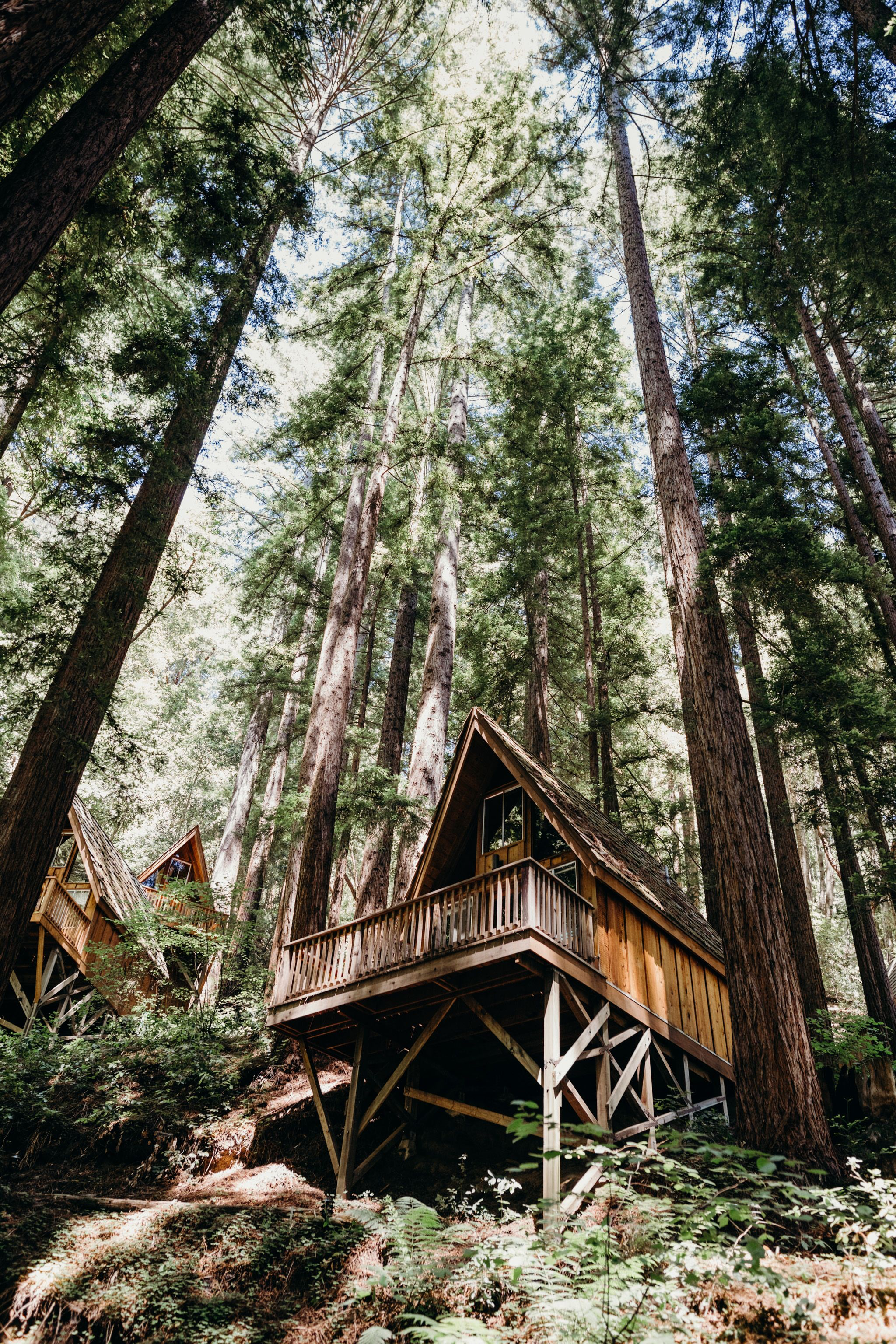 Waterfall Lodge And Retreat In Ben Lomond California Is A Wedding Venue With Camp Vibe The Santa Cruz Mountains