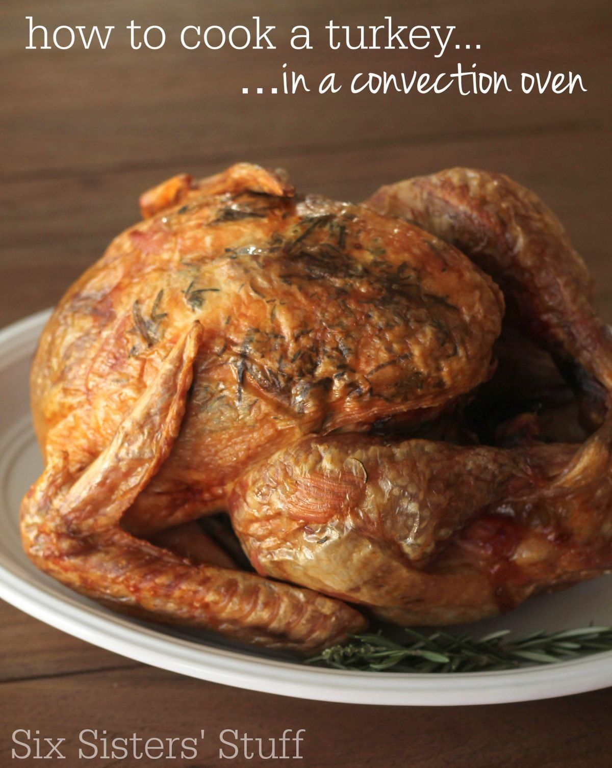 How To Cook A Turkey {in a convection oven} Six Sisters