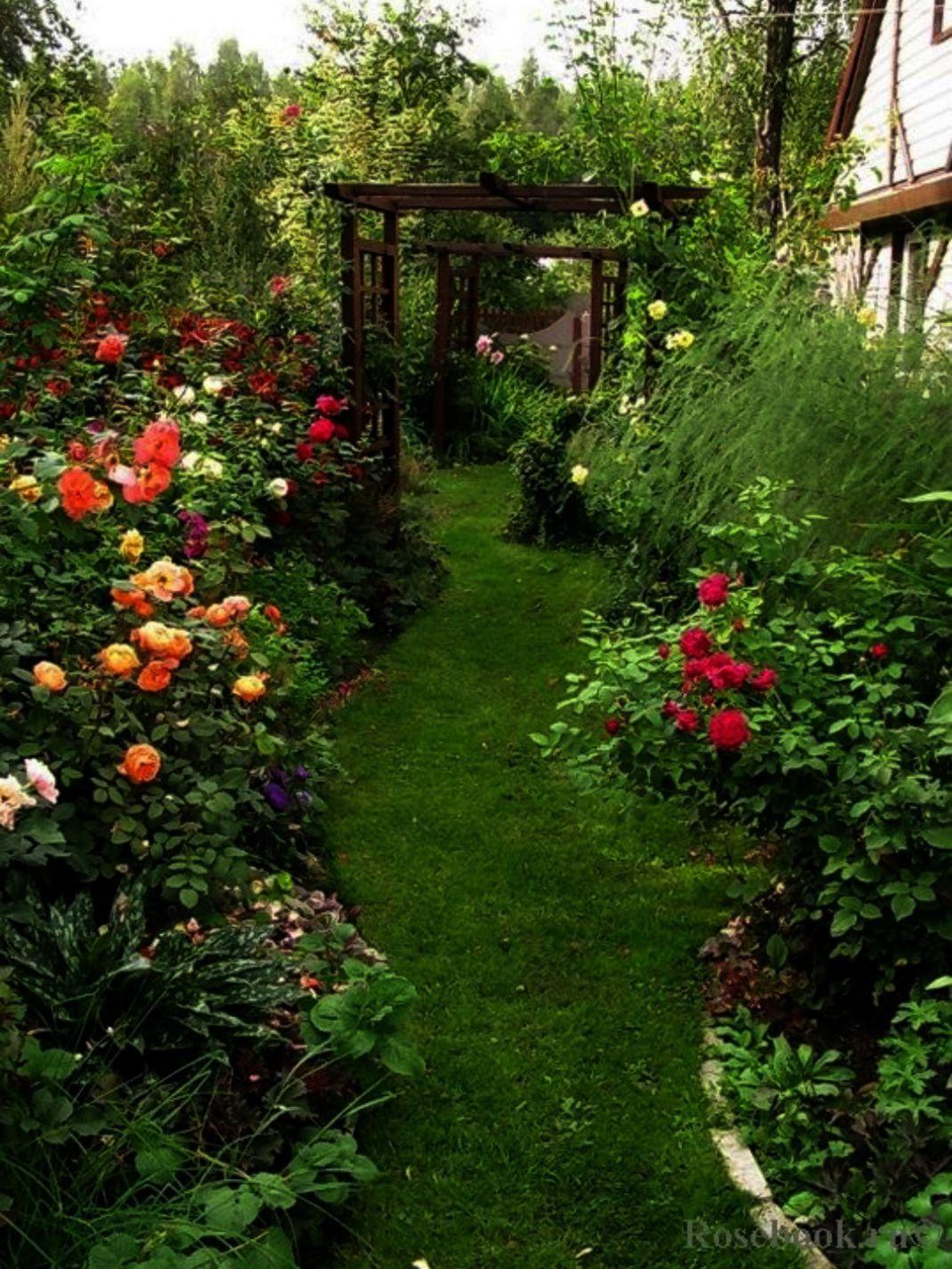 Landscape Gardening Magazine Uk Under Planting Ideas For Tall Outdoor Planters Backyard Landscape Landscape Design Backyard Landscaping Cottage Garden Design