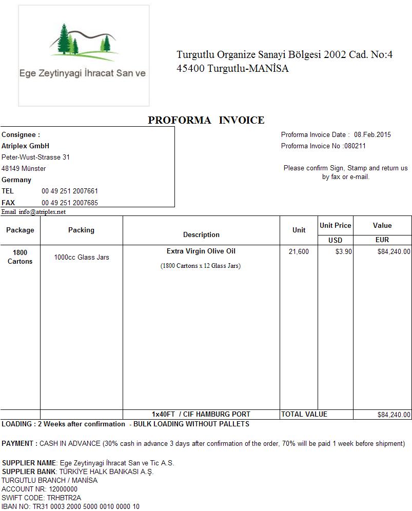 model proforma invoice