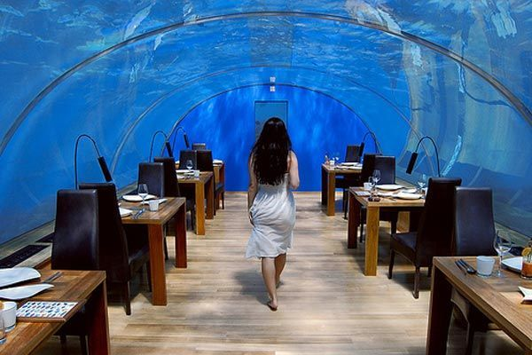 Colorful Coral Reef | Ithaa Undersea Restaurant - The First Ever Undesea Restaurant in the ...smiles...never mind, I'll be there.