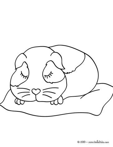 This lovely Sleeping guinea pig coloring page is so cute. Nice ...