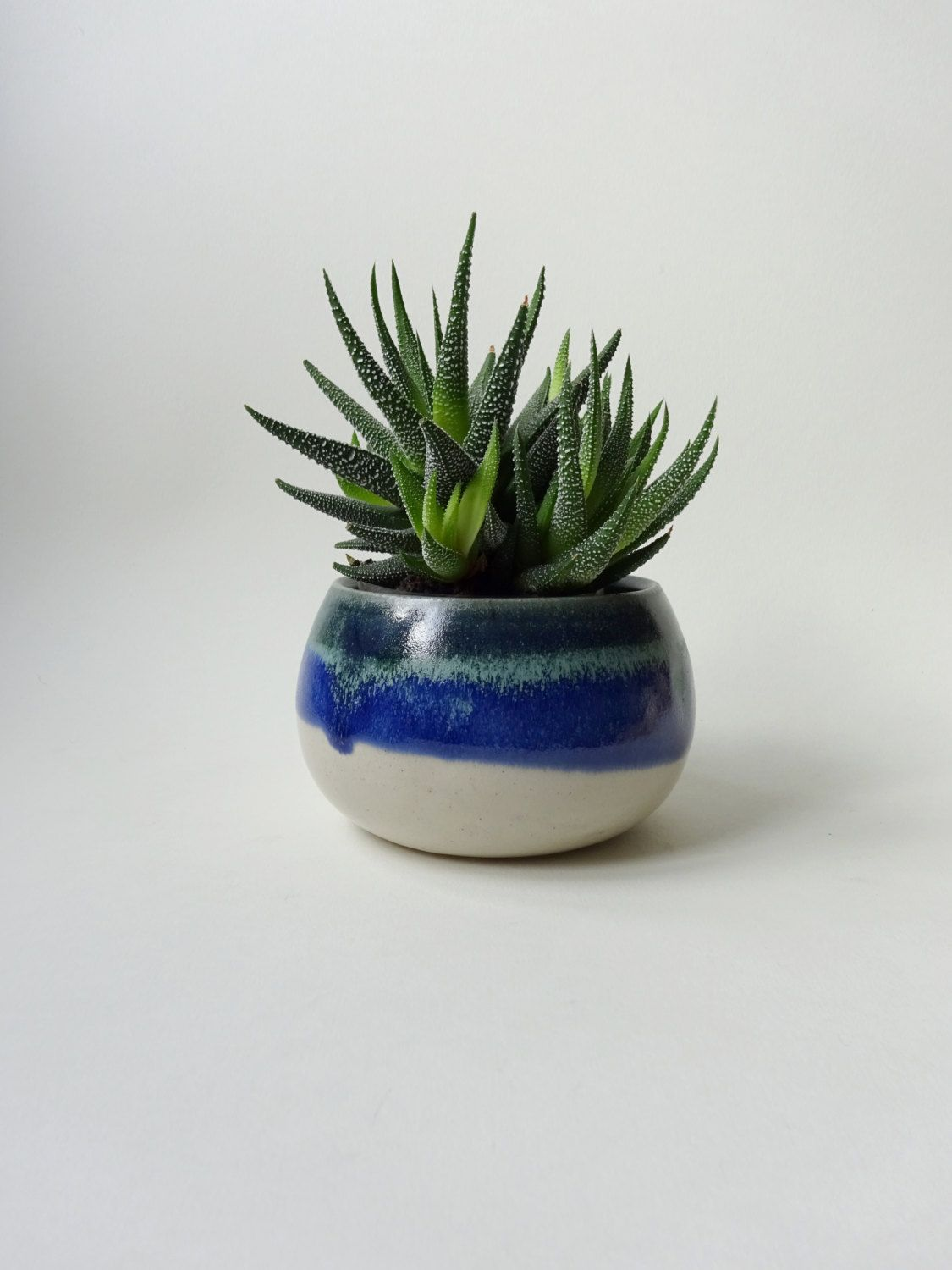 Small Blue Green Light Blue Vase P*T For Plants 400 x 300