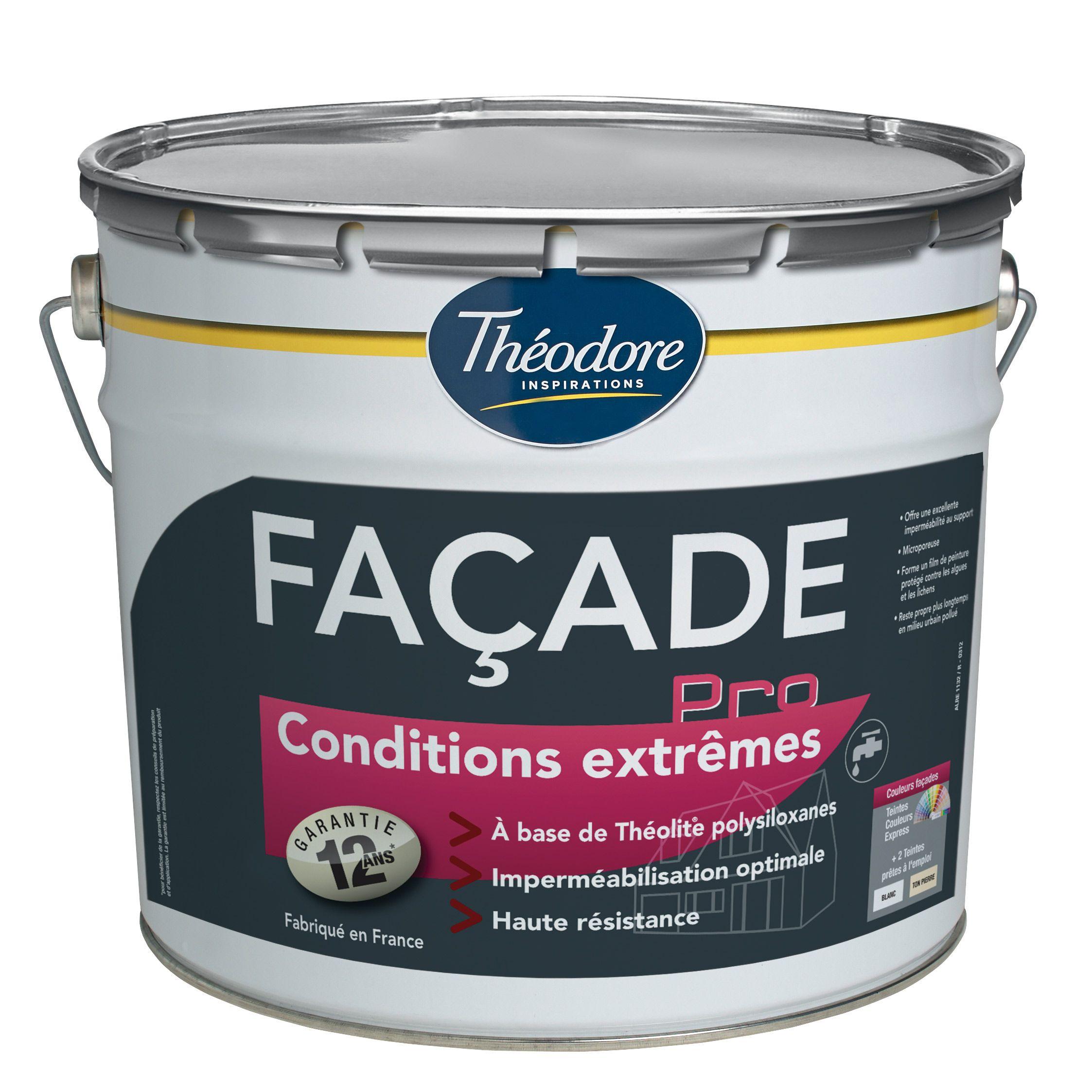 Facade Pro Conditions Extremes Ce Produit Permet A Votre Facade De Rester Propre Plus Longtemps En Milieu Urbain Pollue Plus D Infos Sur Www Theodore Fr