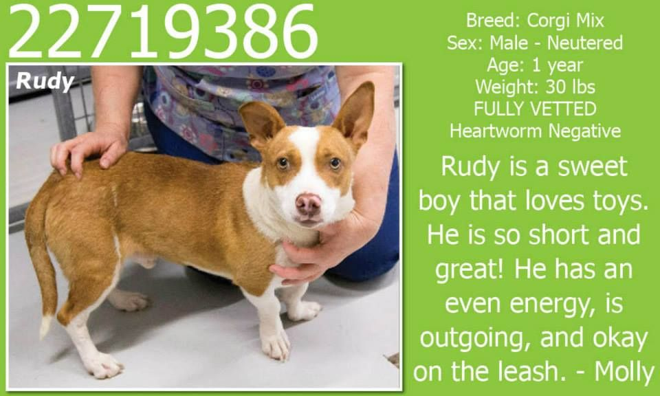 **Fort Worth, TX**CURRENT STATUS Must be tagged for