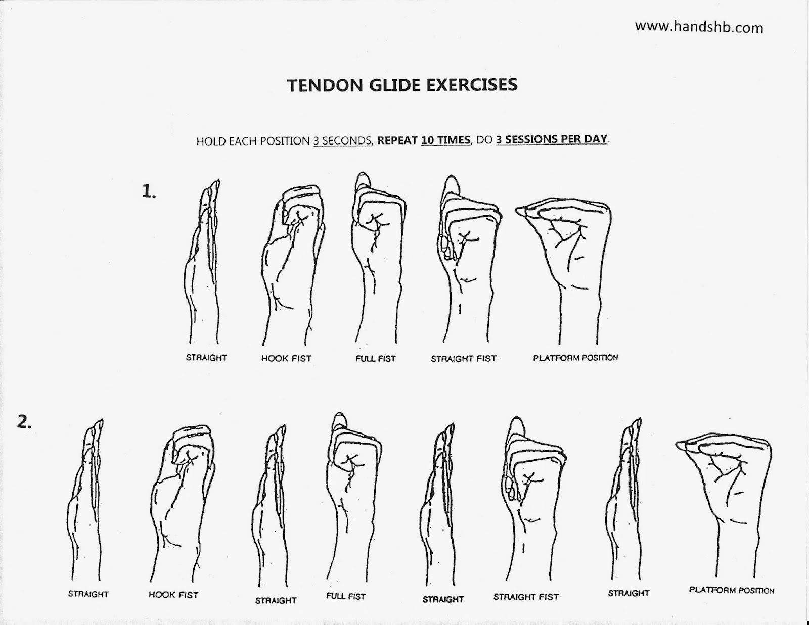 Hb Hands Tendon Glide Exercises