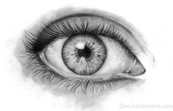 Come disegnare un occhio realistico tutorial disegno for Immagini da copiare a mano